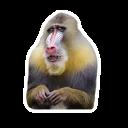 Ебанутые Животные (@memenimal)