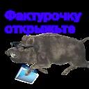 Kabanchikom