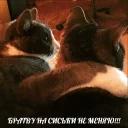 po rzhat'