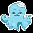 Ronas IT