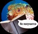 Рыбы пытаются читать