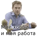 Веб-студия Сокол