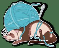 Ferret Pack
