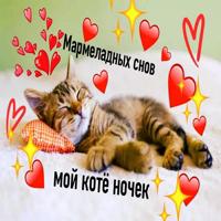 Няшные Пикчи