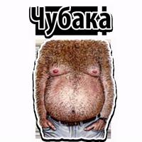 🐷 Типы Мужских Сисек @TuristasTV