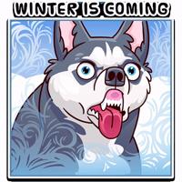 Moar Dog Memes