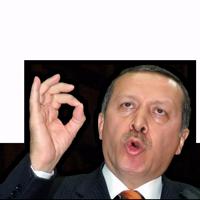 Mr. Erdogan