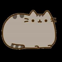 Такой Разный Котя