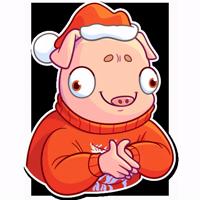 Mr. Piggy