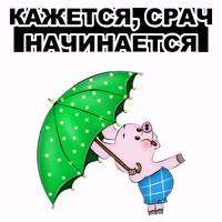 Свинопак @eeZee_stickers
