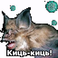 Поторочений кажан