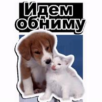 ЩЕНКИ @TuristasTV