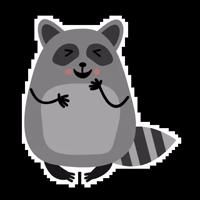 Raccoon_Nikita