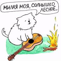 Самоедик Ачи