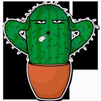 Sarcactus