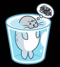 Seal_V_Stakane