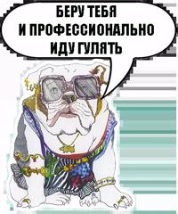 Sobachki