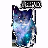 🐱 Коты из космоса @TuristasTV