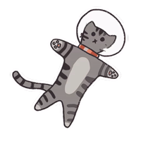 Space Kitties by @spacejournal