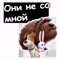 @animesticks :: Тайная жизнь домашних животных