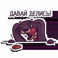 Dachshund taxa dog @artrarium