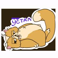 Кот Ленивец