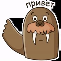 Морж Иннокентий by @alena_grebenkina