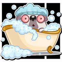 Water Pug