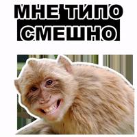 Животные @eeZee_stickers