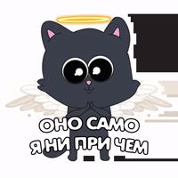 Кот IT-шника
