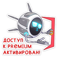 Дрон Premium