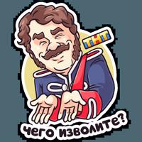 Гусар ТНТ