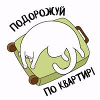 karantinkapack