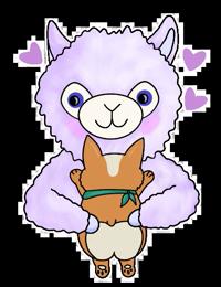 Lil Alpaca