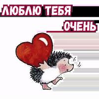 Влюбленный ёжик :: @animesticks