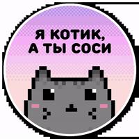 misanthropic cat