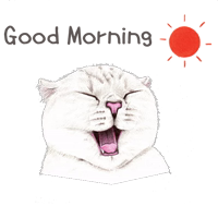 Nala & White Coffee Cat