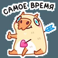 Нежная Пиби :: @stickroom