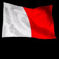 Signal_flags