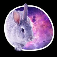 🐇 Космичеческие кролики @lennysticker