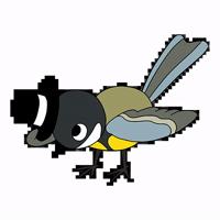 birds @watchingbirds