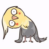 @zeligen7 chii parrot